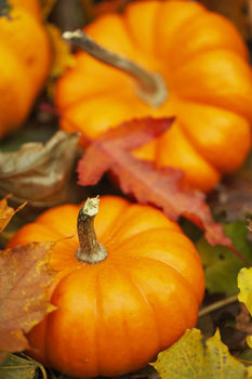pumpkinFALL